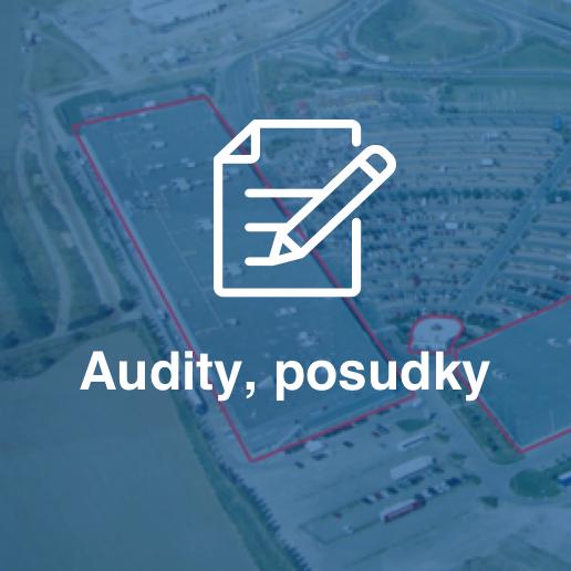 Audit, posudky